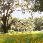 Wedding Venue in Gadsden County: White Dog Plantation, Coca Cola Avenue, Havana, FL